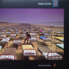 Pink Floyd - A Momentary Lapse Of Reason (V