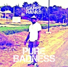 Gappy Ranks - Pure Badness