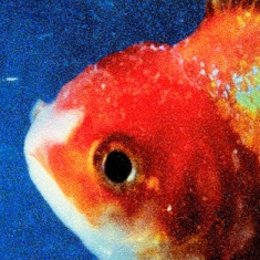 Vince Staples - Big Fish Theory (import)