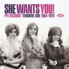 Blandade Artister - She Wants You! Pye Records' Feminin